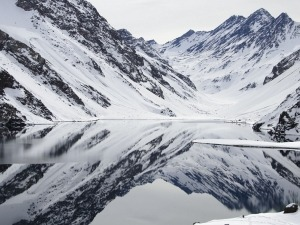 O Fantástico Guia da Neve