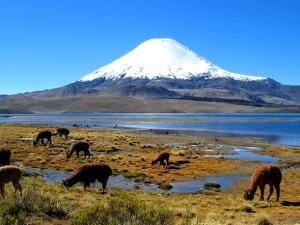 Destinos para trekking #4 – Parinacota