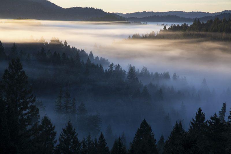 Foto: Bureau of Land Management/Flickr - Creative Commons
