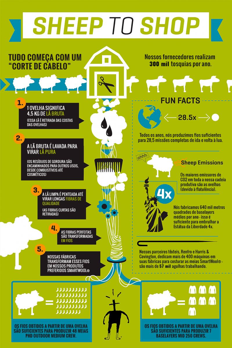 sheep_to_sock_infografico
