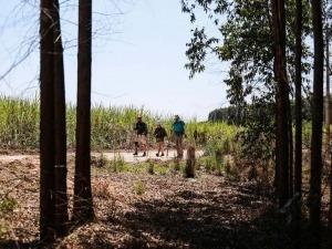 Conheça o Caminho do Sol – um preparatório brasileiro para o Caminho de Santiago