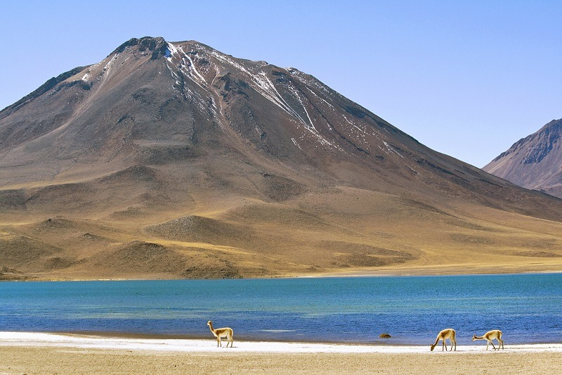 Laguna Miscanti, Chile - Foto: Dimitry B./Flickr - Creative Commons