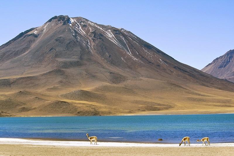 Laguna Miscanti, Chile - Foto: Dimitry B./Flickr - Creative Commons