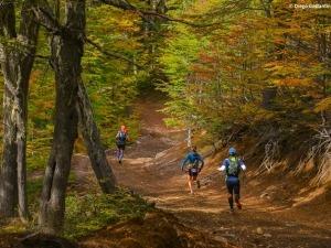 Saiba como migrar da corrida de rua para as provas de montanha