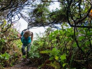 Papo de Mãe: Levando as crianças para a trilha