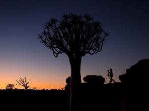 Dicas para fotografar no deserto
