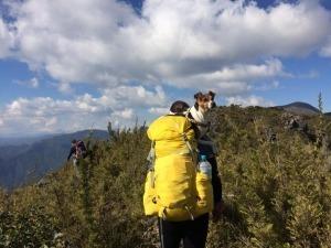 9 conselhos para acampar com o seu cãozinho
