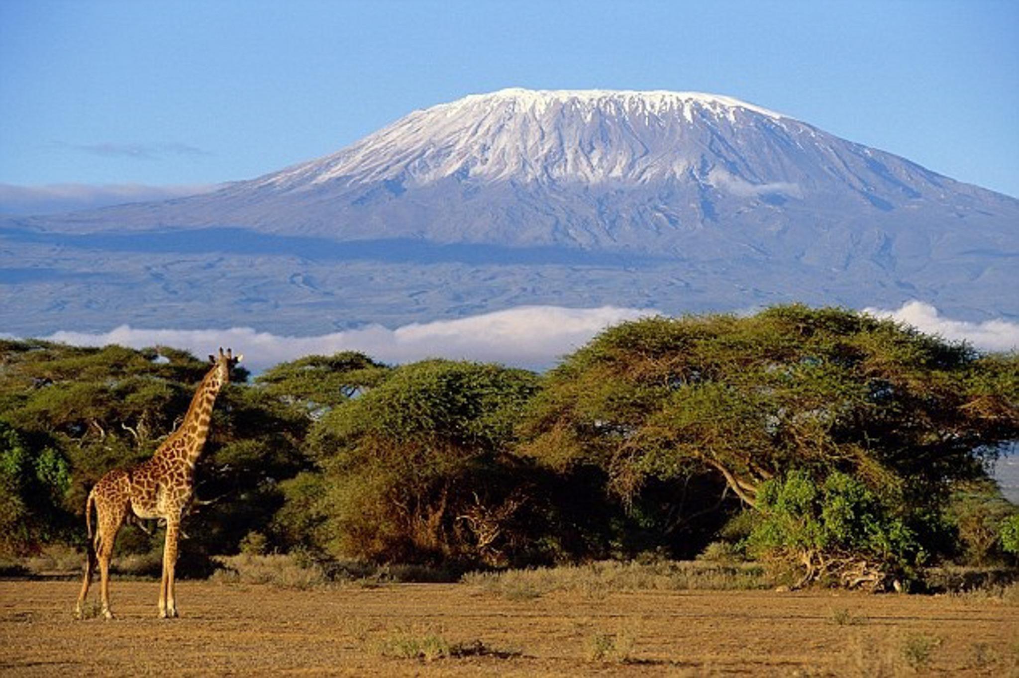 Kilimanjari_globalLandscapesForum_flickr