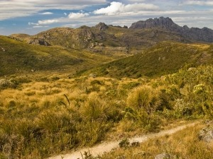 Itatiaia: O Parque Nacional mais antigo do Brasil
