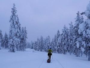 Brasileiro se aventura em corrida de 150km a -25ºC na Finlândia