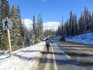 Descobrindo as belezas das Canadian Rockies