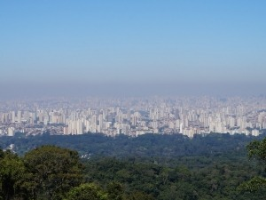 Parque da Cantareira é uma das maiores florestas urbanas do mundo