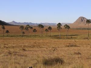 Parque Nacional da Chapada dos Veadeiros está aberto ao público
