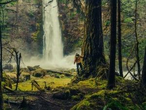 #ReflexõesDaQuarentena: A natureza também precisava de um tempo