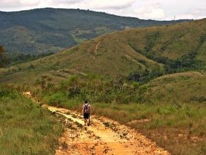 Parque Estadual do Juquery é opção ideal para quem busca trilhas perto de SP
